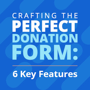 Snowball_Ann Green Nonprofit_Crafting the Perfect Donation Form 6 Key Features_feature