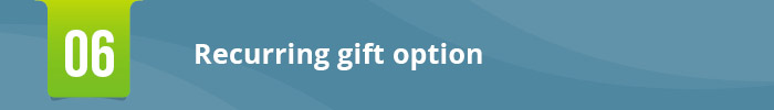 Snowball_Ann Green Nonprofit_Crafting the Perfect Donation Form 6 Key Features_header6